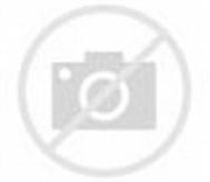 Busana Muslim Pesta dengan Kombinasi Brukat- Fashion Collection untuk ...