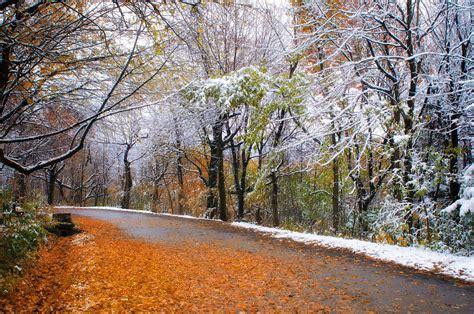 for november montreal november weather information guide