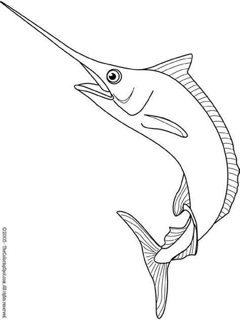 marlin fish coloring pages blue marlin color page tattoo ideas pinterest