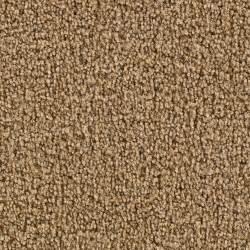 Carpet Per Sq Ft Martha Stewart Living Biltmore Ii Fawn Carpet Per Sq Ft