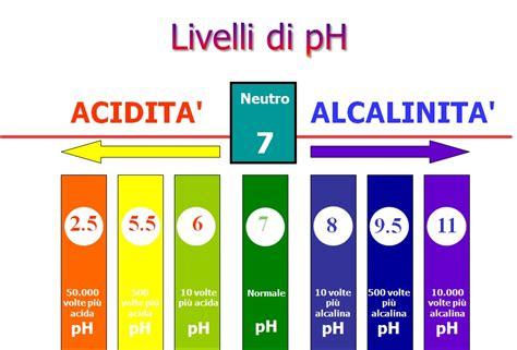 alimenti con ph alcalino la dieta alcalina 232 davvero salutare edo
