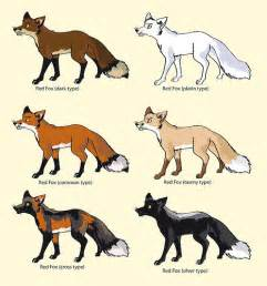 what color are foxes pin fox colouring pages on