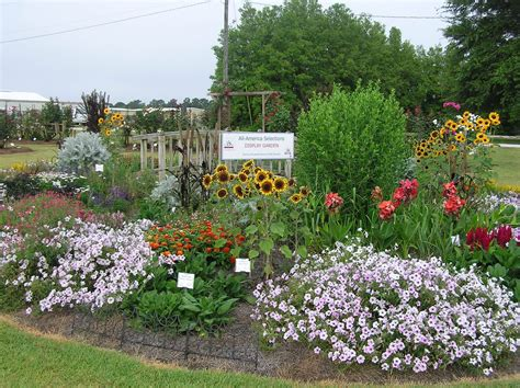 where can i find an aas display garden all america