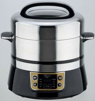 Electric Mini Steamer mini electric steamer with stainless steel cavity