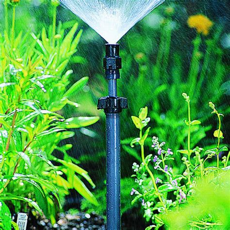 flower bed sprinklers summer watering guide sunset