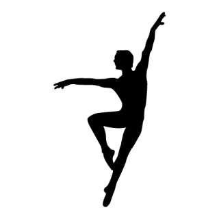 male ballet dancer wall quotes™ wall art decal