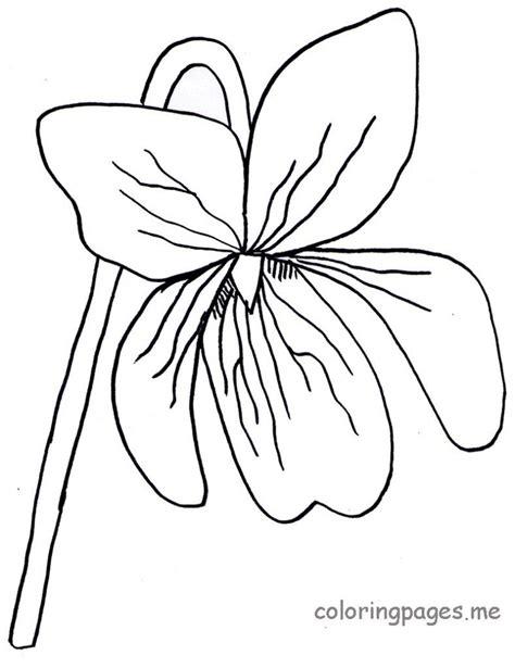 Violet Coloring Page violet flower drawing clipart best
