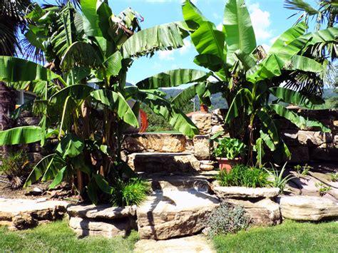 immagini giardini rocciosi giardini rocciosi immagini beautiful attraente giardini