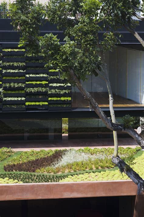 garten terrasse dach roof terrace garden design ideas homes gallery