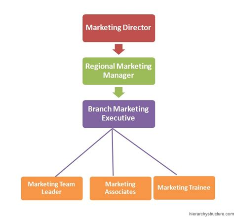 design management job titles 9 best images of it job titles hierarchy management job