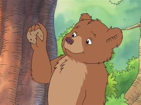 little bear watch little bear season 5 episode 10 little bear s favorite tree something old something new