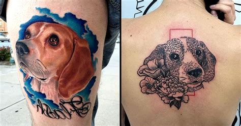 beagle tattoo beagle related keywords beagle