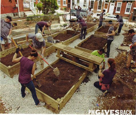 treated wood vegetable garden safely using pressure treated wood for garden frames