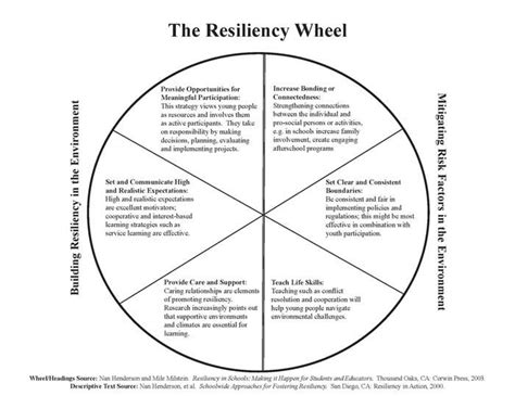 circle building resilience in business and from the jagged edges of ptsd books 17 best ideas about at risk youth on therapy