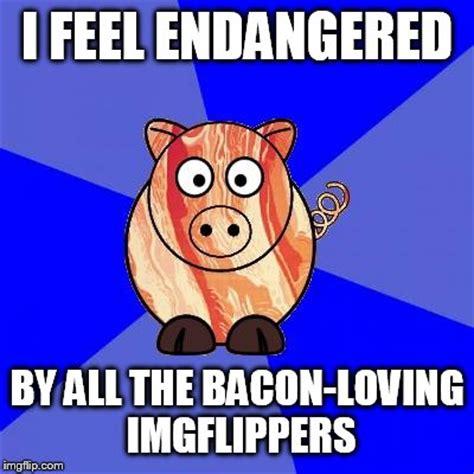 Bacon Meme Generator - self endangerment pig imgflip