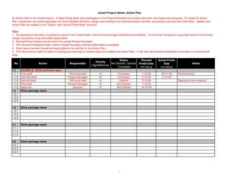 professional action plan template exle with detailed