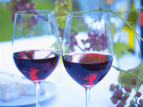light red wine for beginners beginners guide to the best red wine kazzit us wineries