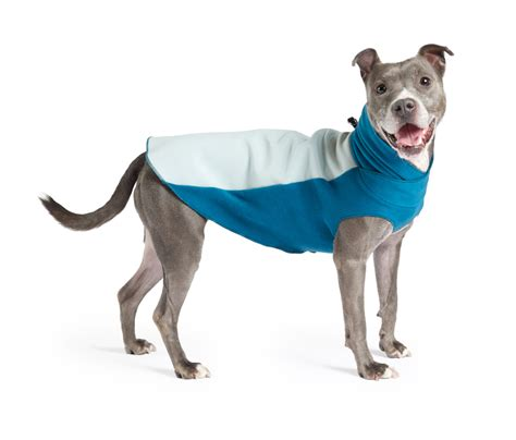leather jacket for dogs fleece pullover jackets from gold paw series milk