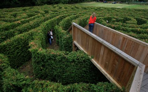 places to go in united states the 19 best places to go apple picking in the united
