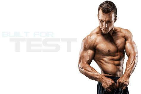muscle png hd transparent muscle hdpng images pluspng