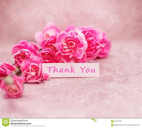 beautiful thank you cards beautiful blooming carnation flowers with thank you