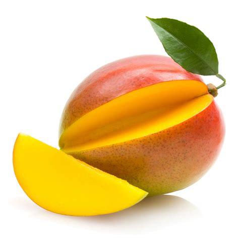 Js Manggo mango clip free quality clipart pictures
