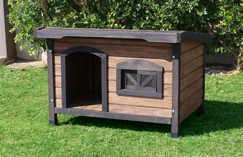roof dog house pet house direct
