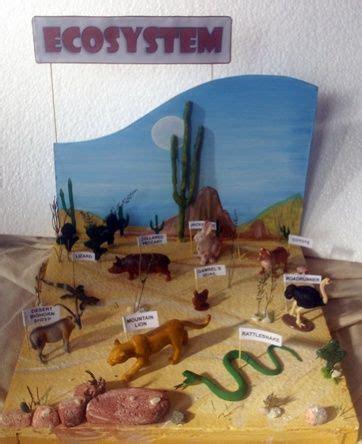 como hacer una maqueta del desierto las 25 mejores ideas sobre maquetas de ecosistemas en