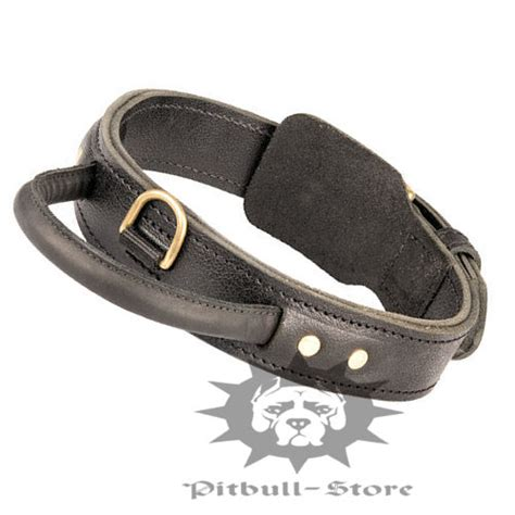 pitbull puppy collars my eats what can i do not to bark when alone pitbull collars