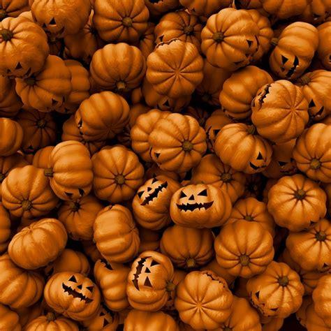 pumpkin background weekend wallpapers themed insight