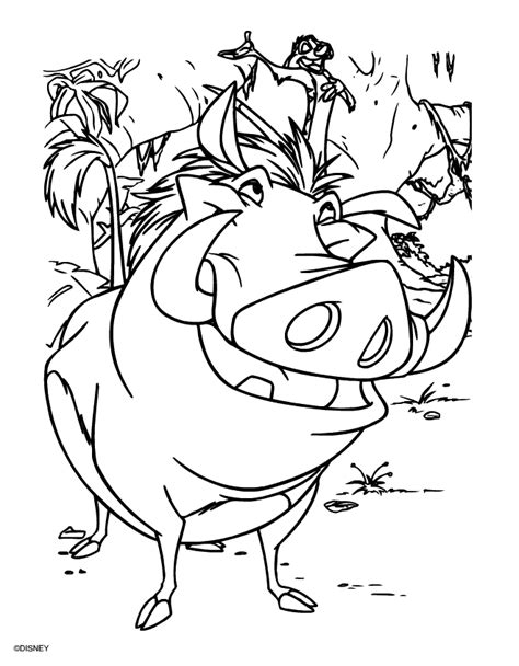 1000 Images About The Lion King On Pinterest Disney King Coloring Pages