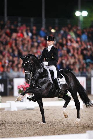 best dressage edward gal and moorlands totilas moorlands totilas edward gal wow it takes talent to