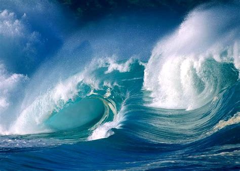 surfing the techno tsunami catch the wave transform your books mentawai tsunami some waves may reached 17 meter