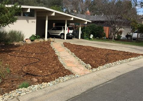 Killing grass with wrapping paper and mulch