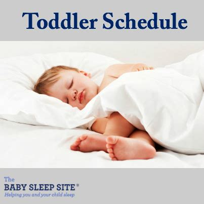 your toddler's schedule | the baby sleep site baby