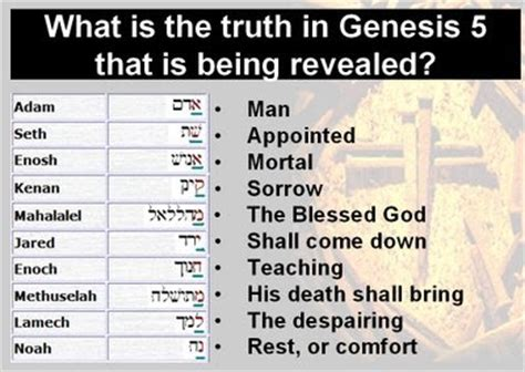 genealogy genesis 63 best ideas about the blueprint of genesis on