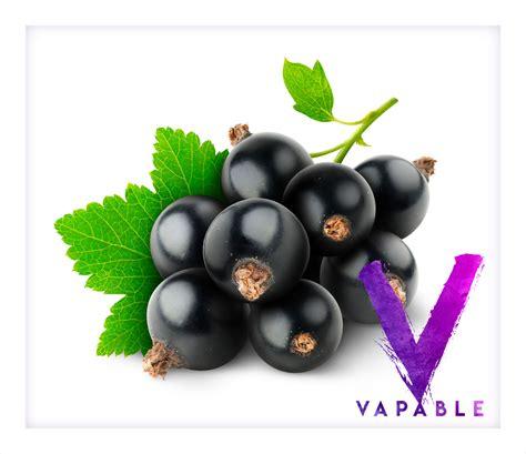 fruitiest e liquid buy blackcurrant e liquid 10ml bottle vapable