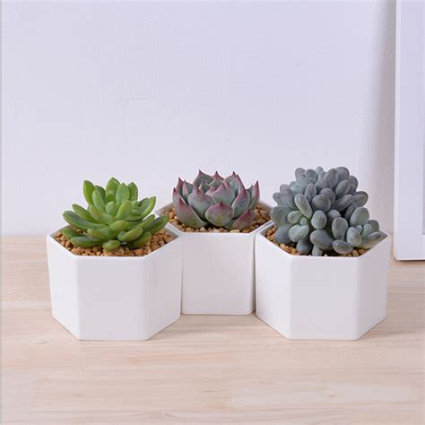 Small Pots For Home Decor Small Hexagonal White Ceramic Flower Pot Desktop Decor