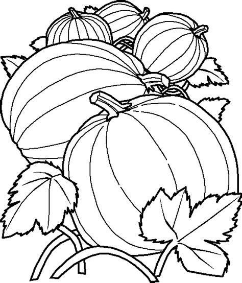 Vegetable Coloring Pages 8 Fall Pumpkin Coloring Pages