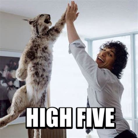High Five Meme - high five meme memeland pinterest meme