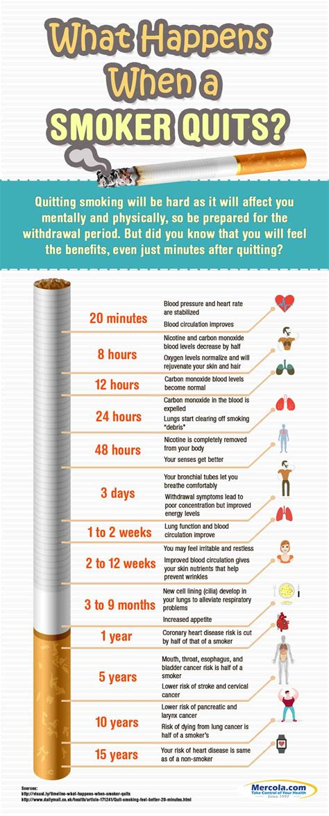 quit smoking clinics in usa i stop quit smoking guide what happens when a smoker quits one regular guy