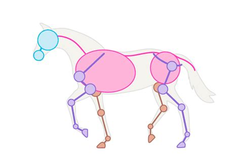 vector horse tutorial drawinghorse 2 2 trot animation