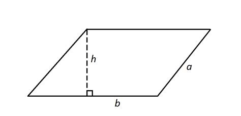 parallelogram diagram how to find the area of a parallelogram ssat middle