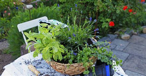 garten kräuterschnecke kr 228 uterel selbst bepflanzen kr 228 uter k 252 che balkon