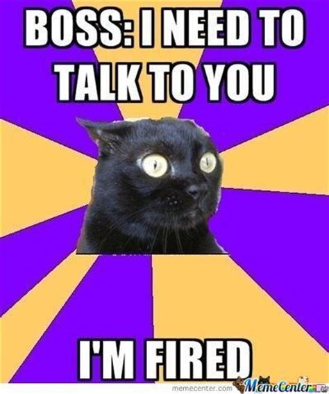 Anxiety Meme - anxiety cat lol pinterest