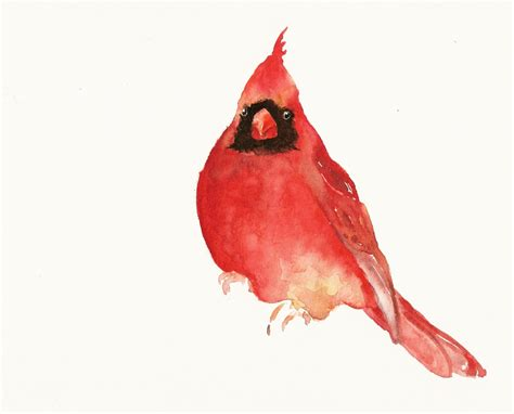 watercolor cardinal tattoo sea style march 2010
