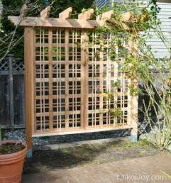 Rose Trellis Plans by Beautiful Garden Trellis For Climbing Roses Or Vines