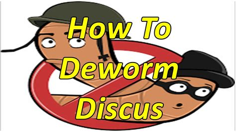 how to deworm a how to deworm and remove parasites from discus