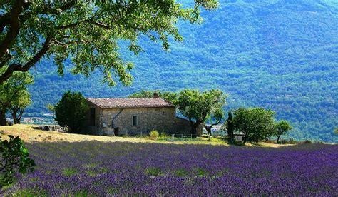 in provenza provenza viaggi vacanze e turismo turisti per caso