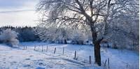 Preliminary Winter 2016 Forecast  Cirrus Weather